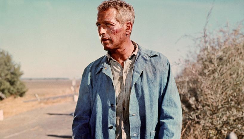 Cool Hand Luke (1967)Directed by Stuart RosenbergShown: Paul Newman (as Luke)